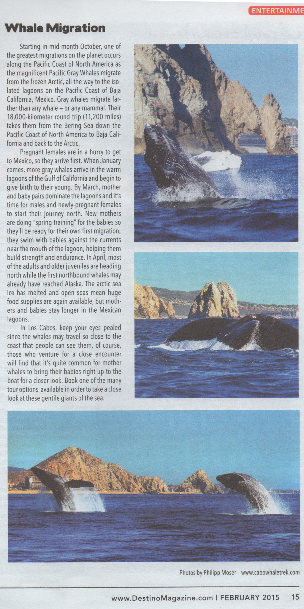 Destino Magazine Feb 2015_CaboTrek